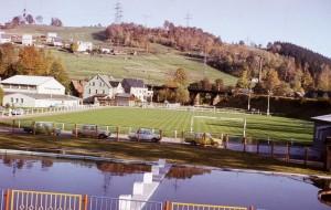 Rasenplatzbau-8